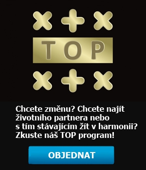 transformační TOP program
